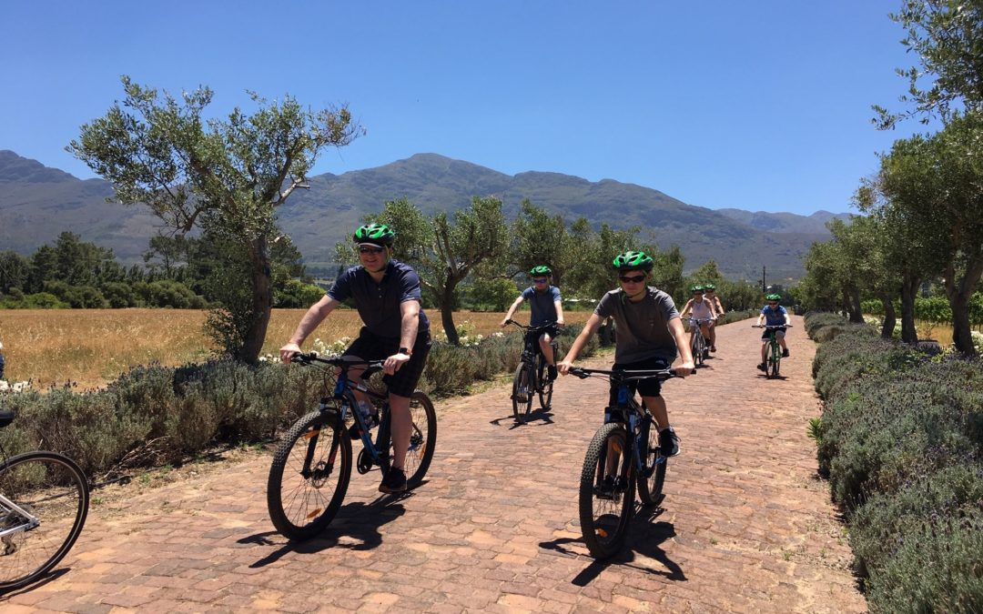 Franschhoek Experience (Half and Full Day)